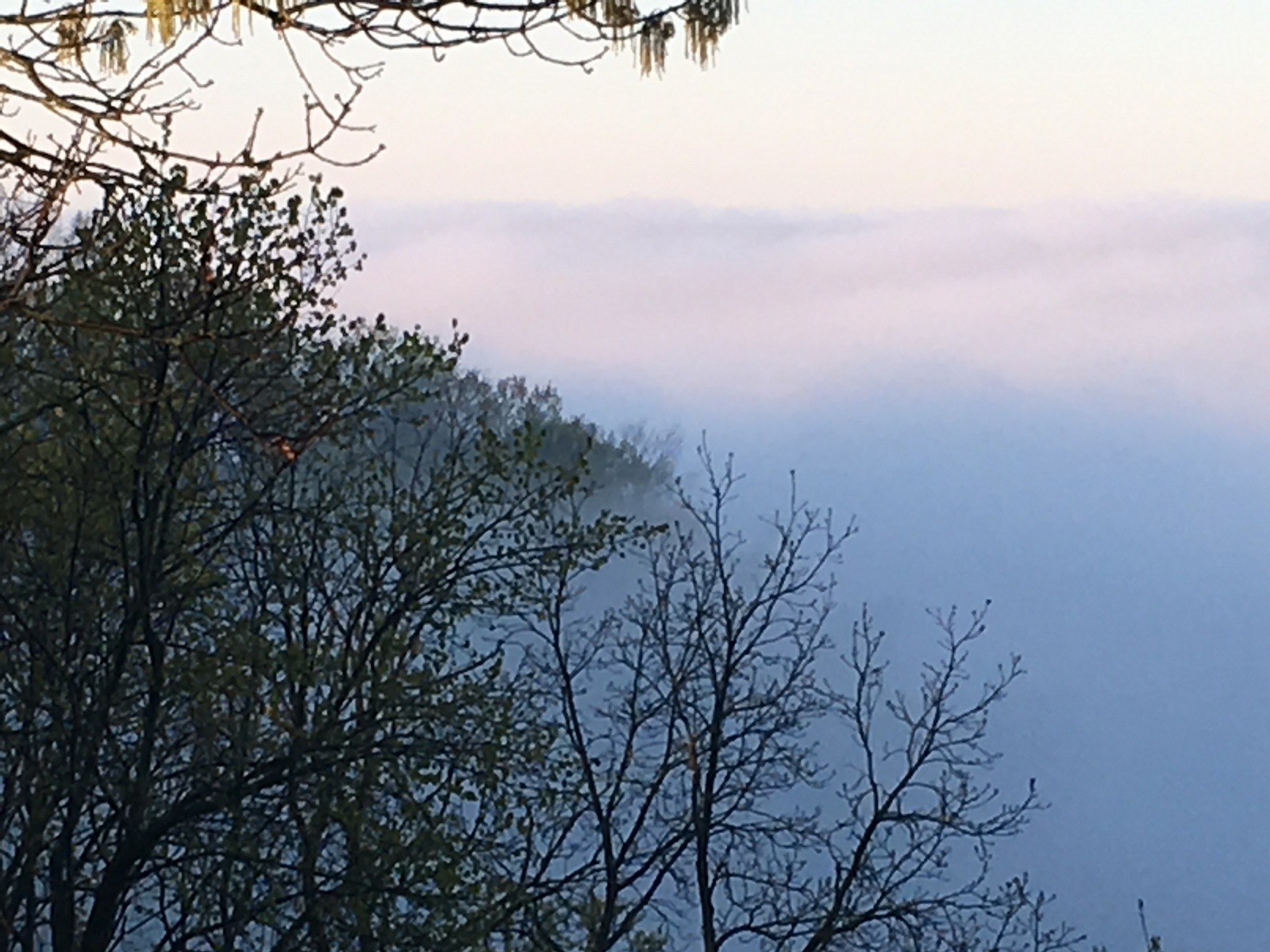 Foggy_River_Valley