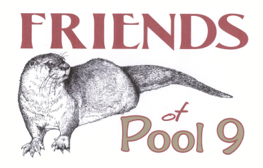 Friends of Pool 9 Logo
