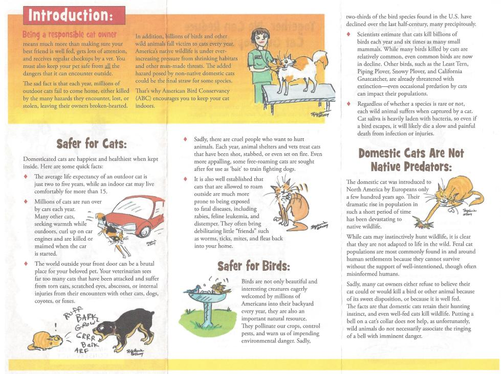 Cat-and-Bird-Safety-pamphlet-horizontal